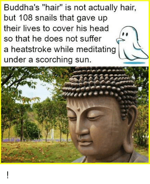 "Memes, Buddha, and Covers: Buddha's ""hair"" is not actually hair,  but 108 snails that gave up  their lives to cover his head  so that he does not suffer  F  a heatstroke while meditating  under a scorching sun. !"