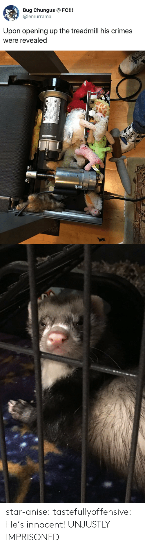 Opening: Bug Chungus @FC!!!  @lemurrama  Upon opening up the treadmill his crimes  were revealed star-anise:  tastefullyoffensive: He's innocent! UNJUSTLY IMPRISONED
