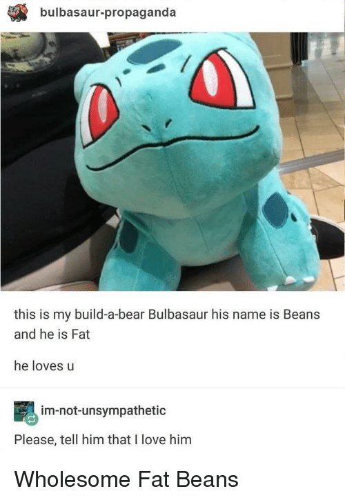Bulbasaur, Love, and Bear: bulbasaur-propaganda  this is my build-a-bear Bulbasaur his name is Beans  and he is Fat  he loves u  im-not-unsympathetic  Please, tell him that I love him Wholesome Fat Beans