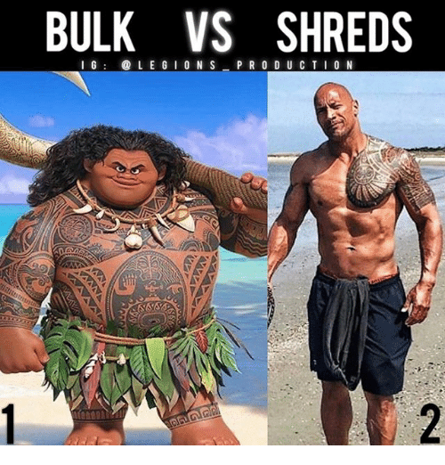 Memes, 🤖, and S&p: BULK VS SHREDS  I G @LE GIO N S P R O D U CTI0 N