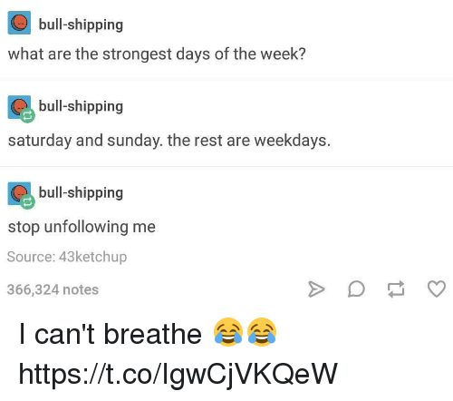saturday-and-sunday: bull-shipping  what are the strongest days of the week?  bull shipping  bull-shipping  saturday and sunday. the rest are weekdays.  bull shipping  bull-shipping  stop unfollowing me  Source: 43ketchup  366,324 notes I can't breathe 😂😂 https://t.co/IgwCjVKQeW