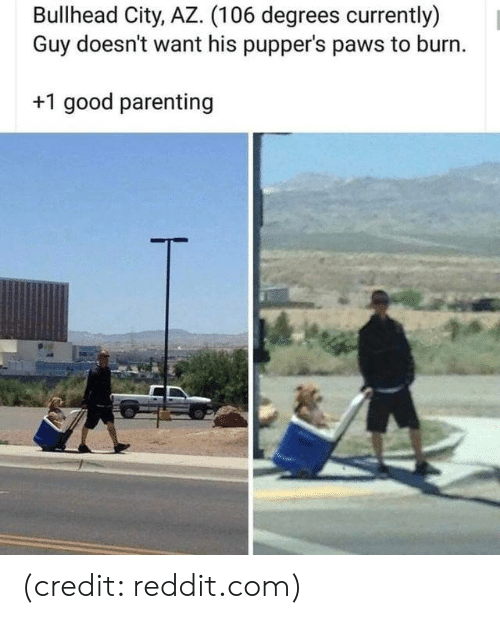 Dank, Reddit, and Good: Bullhead City, AZ. (106 degrees currently)  Guy doesn't want his pupper's paws to burn.  +1 good parenting (credit: reddit.com)