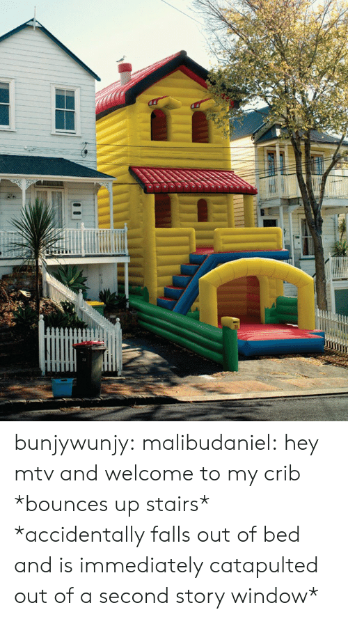MTV: bunjywunjy:  malibudaniel:  hey mtv and welcome to my crib *bounces up stairs*   *accidentally falls out of bed and is immediately catapulted out of a second story window*
