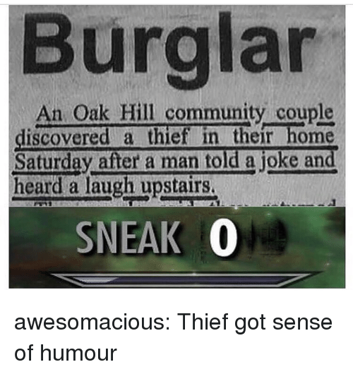 Community, Tumblr, and Blog: Burglar  An Oak Hill community couple  discovered a thief in their home  Saturday after a man told a joke and  heard a laugh upstairs.  SNEAK 0 awesomacious:  Thief got sense of humour