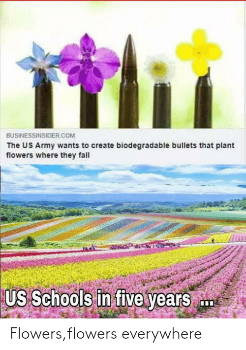 Fall, Army, and Flowers: BUSİNESSINSIDE  The US Army wants to create biodegradable bullets that plant  flowers where they fall  R.COM  US Schools in five years Flowers,flowers everywhere