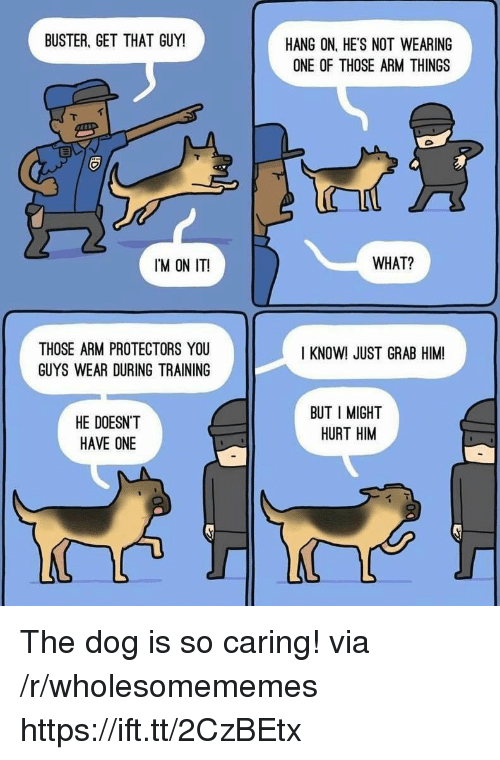Dog, Arm, and Him: BUSTER, GET THAT GUY!  HANG ON, HE'S NOT WEARING  ONE OF THOSE ARM THINGS  IM ON IT!  WHAT?  THOSE ARM PROTECTORS YOU  GUYS WEAR DURING TRAINING  I KNOW! JUST GRAB HIM  HE DOESN'T  HAVE ONE  BUT I MIGHT  HURT HIM The dog is so caring! via /r/wholesomememes https://ift.tt/2CzBEtx