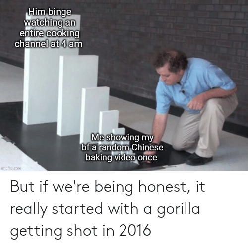 In 2016: But if we're being honest, it really started with a gorilla getting shot in 2016