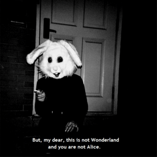 alice: But, my dear, this is not Wonderland  and you are not Alice.