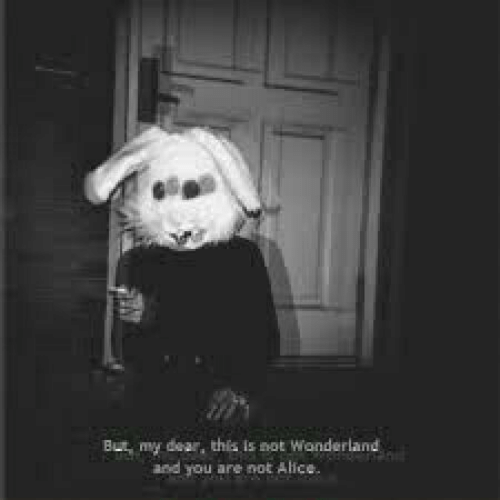 alice: But my dear, this is not Wonderland  and you are not Alice