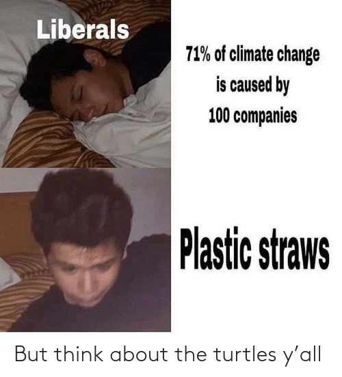 think: But think about the turtles y'all