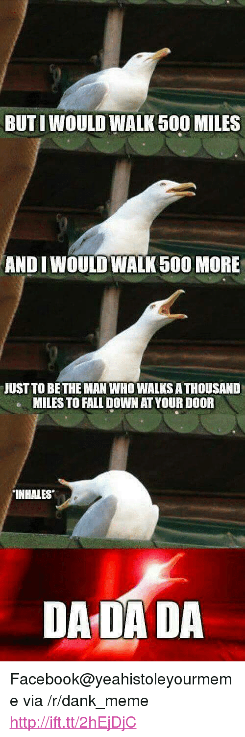 "500 Miles: BUTI WOULD WALK 500 MILES  AND I WOULD WALK500 MORE  JUST TO BE THE MAN WHOWALKS ATHOUSAND  MILES TO FALL DOWN AT YOUR DOOR  INHALES  DADADA <p>Facebook@yeahistoleyourmeme via /r/dank_meme <a href=""http://ift.tt/2hEjDjC"">http://ift.tt/2hEjDjC</a></p>"