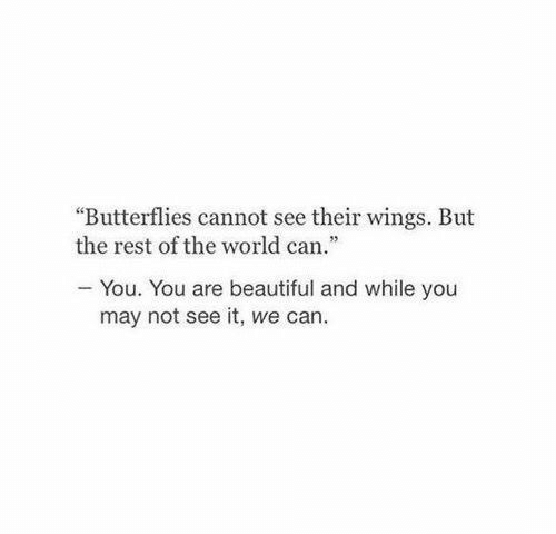 """butterflies: """"Butterflies cannot see their wings. But  the rest of the world can.""""  You. You are beautiful and while you  may not see it, we can."""