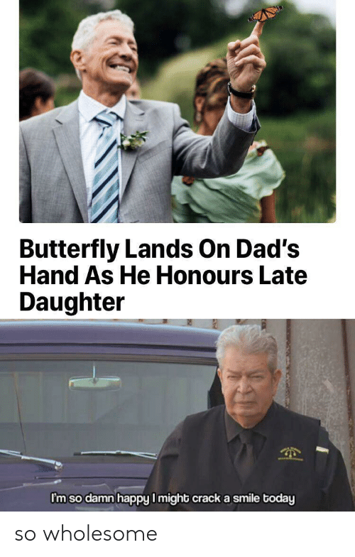 Butterfly, Happy, and Smile: Butterfly Lands On Dad's  Hand As He Honours Late  Daughter  I'm so damn happy I might crack a smile today so wholesome