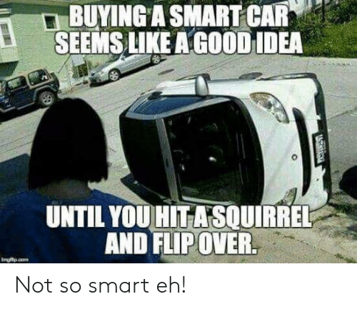 So Smart: BUYING A SMART CAR  SEEMS LIKE A GOOD IDEA  UNTIL YOU HITASOUIRREL  AND FLIP OVER.  Imgfp.o  ATARGY Not so smart eh!