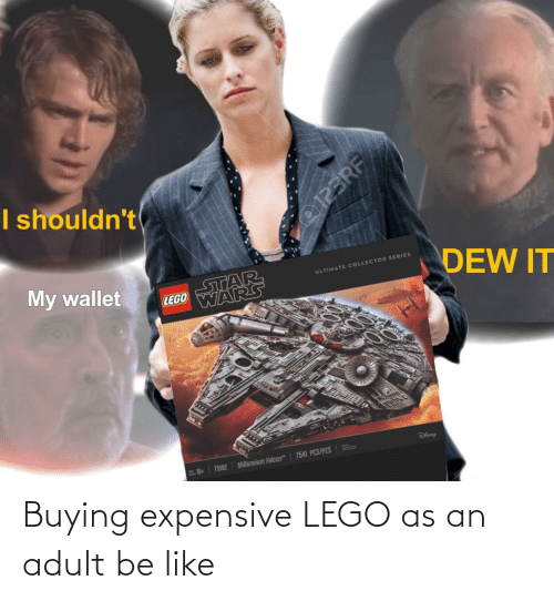Buying: Buying expensive LEGO as an adult be like