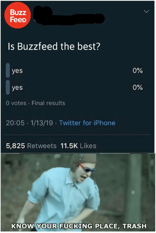 Buzzfeed: Buzz  FeeD  Is Buzzfeed the best?  0%  yes  0%  yes  O votes Final results  20:05 1/13/19 Twitter for iPhone  5,825 Retweets 11.5K Likes  KNOW YOUR FUCKING PLACE, TRASH
