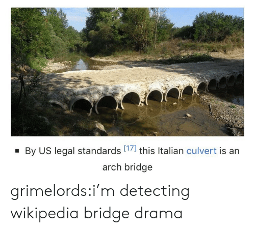 Legal: By US legal standards 17] this Italian culvert is an  arch bridge grimelords:i'm detecting wikipedia bridge drama