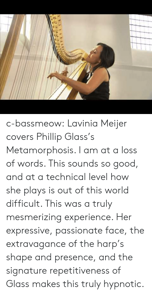 Phillip: c-bassmeow:  Lavinia Meijer covers Phillip Glass's Metamorphosis. I am at a loss of words. This sounds so good, and at a technical level how she plays is out of this world difficult. This was a truly mesmerizing experience. Her expressive, passionate face, the extravagance of the harp's shape and presence, and the signature repetitiveness of Glass makes this truly hypnotic.
