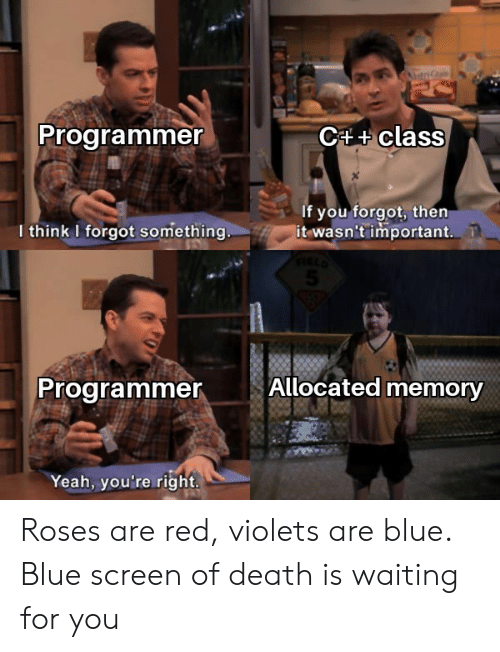 Red Violets Are: C4+class  Programmer  If you forgot, then  it wasn't important.  I think I forgot something..  Allocated memory  Programmer  Yeah, you're right. Roses are red, violets are blue. Blue screen of death is waiting for you