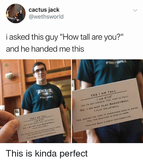 "Basketball, Head, and Memes: cactus jack  @wethsworld  i asked this guy ""How tall are you?""  and he handed me this  YES I AM TALL  I AM 6'1o  (No I'M NOT KIDDING. YES, THAT IS TALL)  No, I DO NOT PLAY BASKETBALL  YES 1 AM TALL  I AM 6'10  No. I Do NOT PLAY BASKETBALL  I PLAY VOLLEYBALL  ES, SEEING THE TOPS OF EVERYONES HEAD Is wEIRD  YES, THE WEATHER Is NICE UP HERE  I PLAY VOLLEYBALL  YES THE WEATHE  THIS HAS BEEN A GREAT CONVERSATION.  AT COM This is kinda perfect"