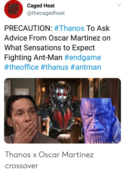 Advice, The Office, and Antman: CAGEDCaged Heat  HEAT@thecagedheat  PRECAUTION: #Thanos To Ask  Advice From Oscar Martinez on  What Sensations to Expect  Fighting Ant-Man Thanos x Oscar Martinez crossover