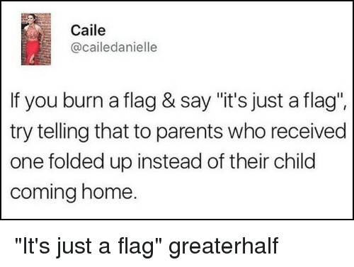 """Memes, Parents, and Home: Caile  @cailedanielle  If you burn a flag & say """"it's just a flag"""".  try telling that to parents who received  one folded up instead of their child  coming home. """"It's just a flag"""" greaterhalf"""