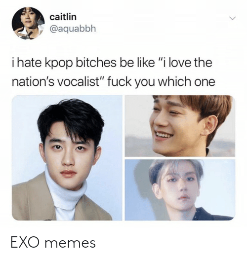 "Be Like, Fuck You, and Love: caitlin  @aquabbh  i hate kpop bitches be like ""i love the  nation's vocalist"" fuck you which one EXO memes"