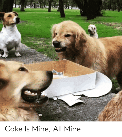 Cake: Cake Is Mine, All Mine
