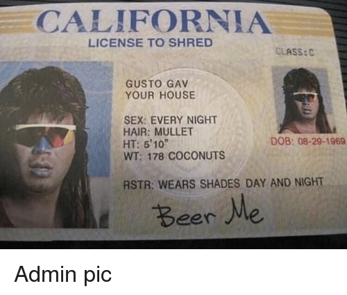 "Shred: CALIFORNIA  LICENSE TO SHRED  CLASS:C  GUSTO GAV  YOUR HOUSE  SEX: EVERY NIGHT  HAIR: MULLET  HT: 510""  WT; 178 COCONUTS  DOB: 08-29-1969  RSTR: WEARS SHADES DAY AND NIGHT  Beere Admin pic"