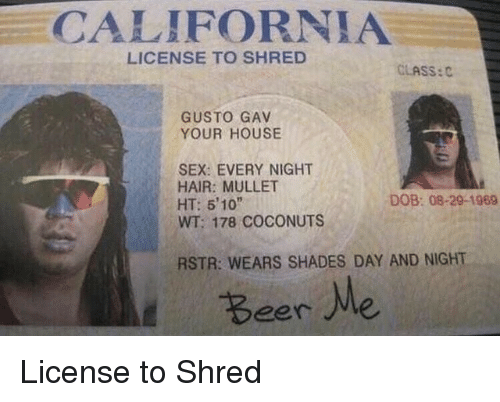Shred: CALIFORNIA  LICENSE TO SHRED  CLASS:C  GUSTO GAV  YOUR HOUSE  SEX: EVERY NIGHT  HAIR: MULLET  HT: 5'10  WT: 178 COCONUTS  DOB: 08-29-1969  RSTR: WEARS SHADES DAY AND NIGHT  Beer Me License to Shred