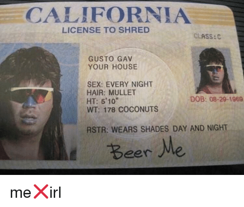Shred: CALIFORNIA  LICENSE TO SHRED  CLASS:  GUSTO GAV  YOUR HOUSE  SEX: EVERY NIGHT  HAIR: MULLET  HT: 5'10  WT; 178 COCONUTS  DOB: 08-29-1969  RSTR: WEARS SHADES DAY AND NIGHT  Beer Me me❌irl