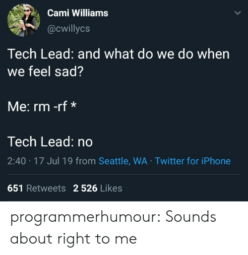 Iphone, Tumblr, and Twitter: Cami Williams  @cwillycs  Tech Lead: and what do we do when  we feel sad?  Me: rm -rf*  Tech Lead: no  2:40 17 Jul 19 from Seattle, WA Twitter for iPhone  651 Retweets 2 526 Likes programmerhumour:  Sounds about right to me