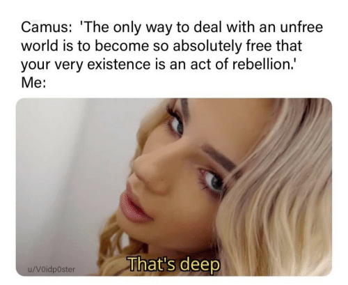 Free, World, and Rebellion: Camus: 'The only way to deal with an unfree  world is to become so absolutely free that  your very existence is an act of rebellion.  Me:  That's deep  u/Voidposter