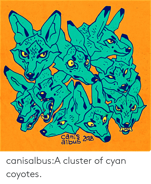Tumblr, Blog, and Http: can 208  albuS canisalbus:A cluster of cyan coyotes.