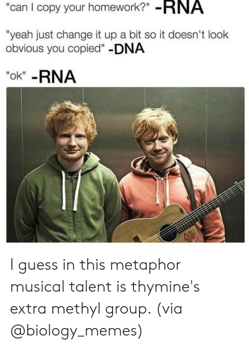 "Memes, Yeah, and Guess: can I copy your homework?"" -RNA  ""yeah just change it up a bit so it doesn't look  obvious you copied""-DNA  ""ok"" -RNA I guess in this metaphor musical talent is thymine's extra methyl group. (via @biology_memes)"