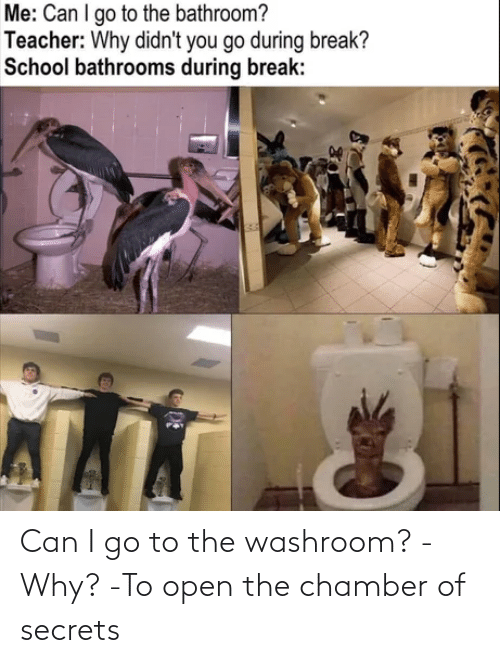 open: Can I go to the washroom? -Why? -To open the chamber of secrets
