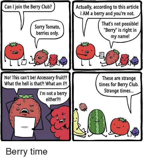 """Club, Sorry, and Time: Can I join the Berry Club?  Actually, according to this article  1 AM a berry and you're not.  Sorry Tomato,  berries only.  That's not possible!  """"Berry"""" is right in  my name!  No! This can't be! Accessory fruit??  What the hell is that?! What am 1?  These are strange  times for Bery Club.  Strange times..  I'm not a berry  either?!! Berry time"""