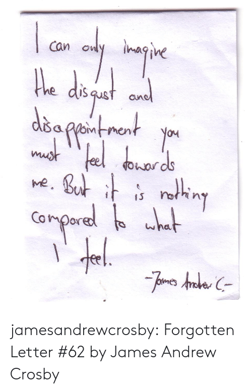 Tumblr, Blog, and Http: Can owlyimagine  iS  oM  ve  s on  Conpor jamesandrewcrosby:  Forgotten Letter #62 by James Andrew Crosby