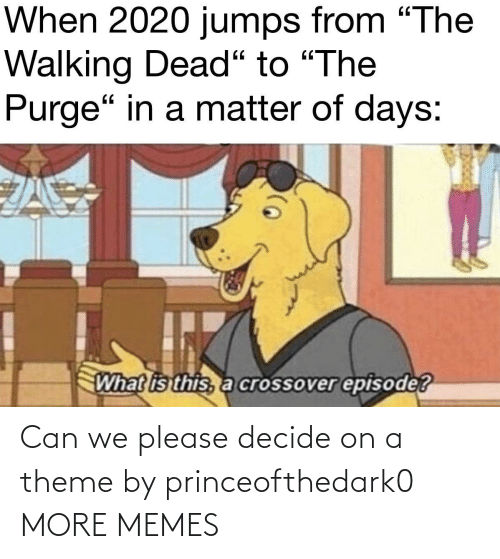 theme: Can we please decide on a theme by princeofthedark0 MORE MEMES