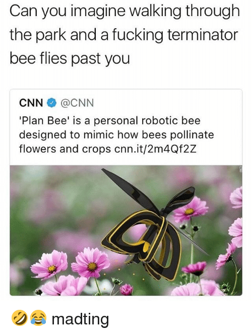 Mimicer: Can you imagine walking through  the park and a fucking terminator  bee flies past you  CNN伞@CNN  'Plan Bee' is a personal robotic bee  designed to mimic how bees pollinate  flowers and crops cnn.it/2m4Qf2Z 🤣😂 madting
