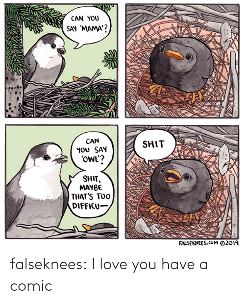 You Say: CAN YOU  SAY 'MAMA'?  CAN  YOU SAY  'OWL'?  SHIT  SHIT,  MAYBE  THAT'S TOO  DIFFICU-  FALSEKNEES.cOM ©2019 falseknees:  I love you have a comic