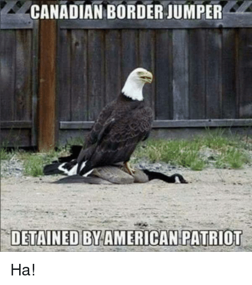 Memes, Canadian, and 🤖: CANADIAN BORDER JUMPER  DETAINED BYAMERICAN PATRIOT Ha!