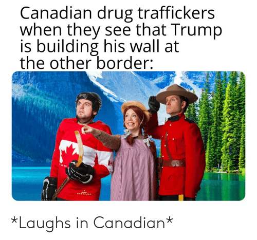 Reddit, Trump, and Canadian: Canadian drug traffickers  when they see that Trump  is building his wall at  the other border:  CAN *Laughs in Canadian*