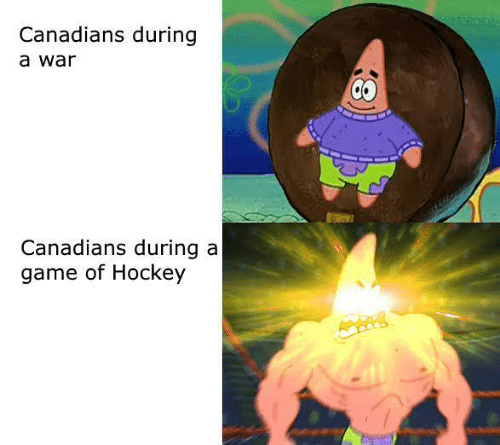 Canadians: Canadians during  a war  Canadians during a  game of Hockey