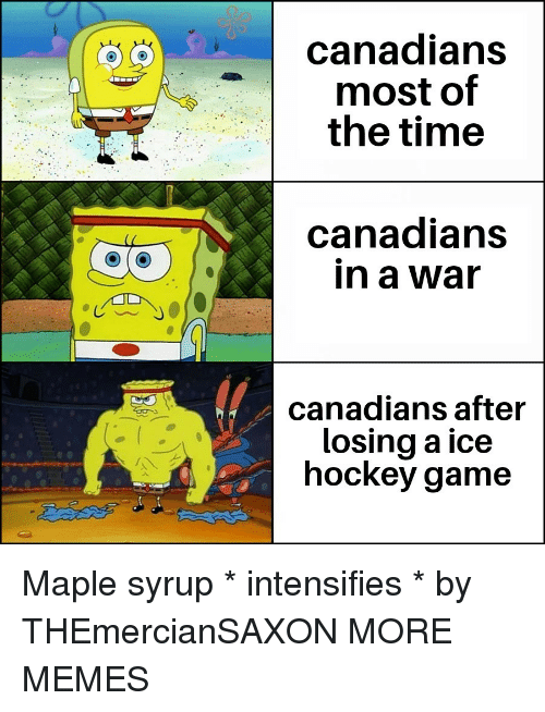Dank, Hockey, and Memes: canadians  most of  the time  canadians  in a war  canadians after  losing a ice  hockey game Maple syrup * intensifies * by THEmercianSAXON MORE MEMES