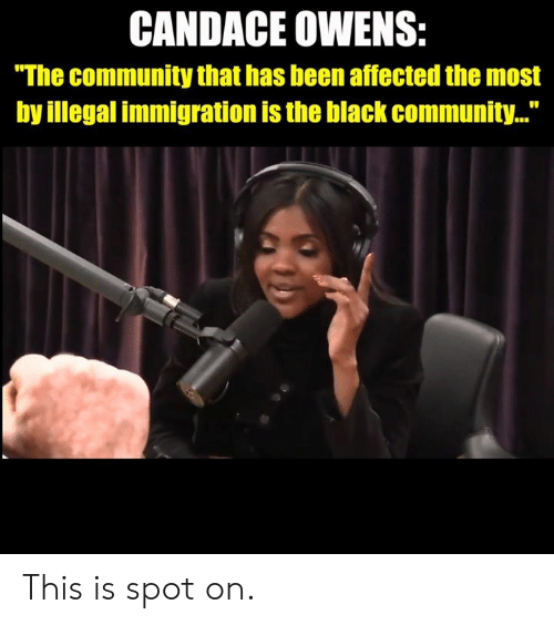 "illegal immigration: CANDACE OWENS:  ""The community that has been affected the most  by illegal immigration is the black community..."" This is spot on."