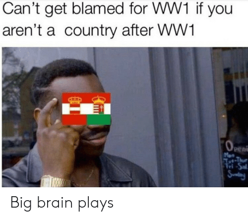 sal: Can't get blamed for WW1 if you  aren't a country after WW1  OeEn  Men  Aet-Thue  Tri-Sal  Snday Big brain plays