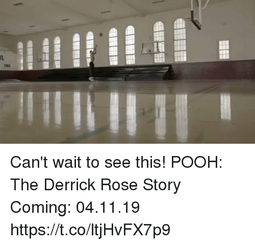 Derrick Rose, Memes, and Rose: Can't wait to see this!  POOH: The Derrick Rose Story Coming: 04.11.19  https://t.co/ltjHvFX7p9
