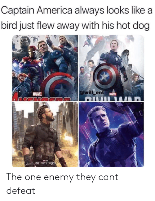 America, Infinity, and Dog: Captain America always looks like a  bird just flew away with his hot dog  willcent  MARVE  INFINITY wAR The one enemy they cant defeat