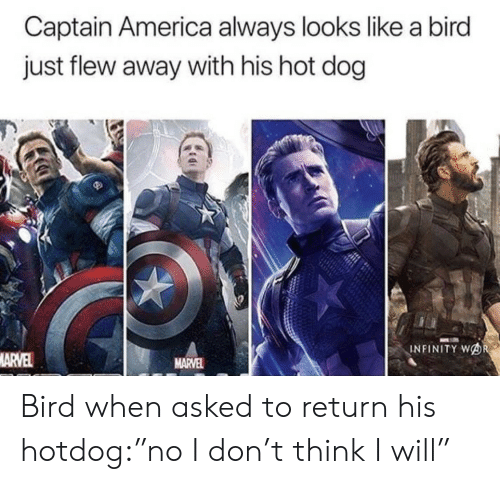 """Infinity: Captain America always looks like a bird  just flew away with his hot dog  INFINITY WOR  MARVEL  MARVEL Bird when asked to return his hotdog:""""no I don't think I will"""""""